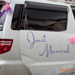 Just Married Wall Decal